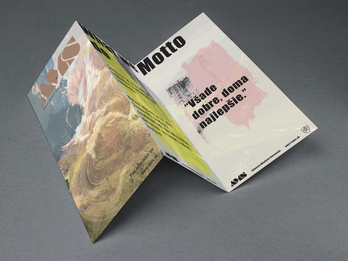 Tri Fold Brochure MockUp.jpg